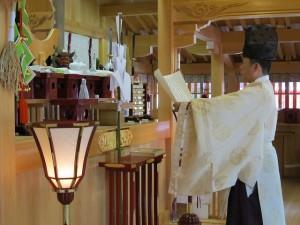 奉納子供相撲大会2014-04